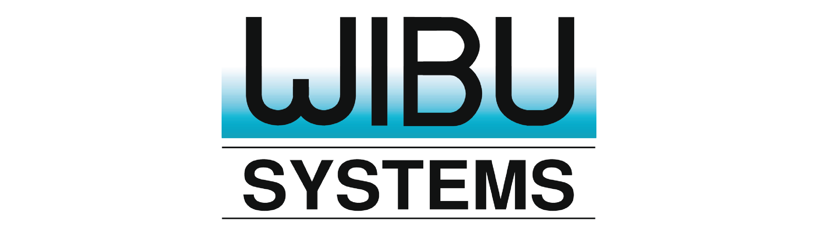 WIBI SYSTEMS